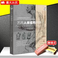 艺用人体结构教学 胡国强编 人体绘画经典教材 素描几何形体大师临摹造型人物解剖手绘漫画工具书参考指南畅销书籍