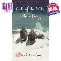 预售【中商原版】野性的呼唤英文原版小说 英文版 Call Of The Wild/Whitefang 英文原版书 杰克