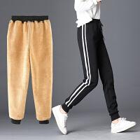 加绒加厚羊羔绒系带运动休闲裤 中腰女士长裤