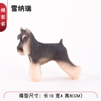 宠物犬老头狗雪纳瑞犬模型玩具儿童礼物仿真狗狗模型