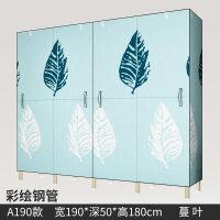 简易布衣柜开门式全钢架加厚双人组装折叠全挂布艺收纳衣柜经济型 彩绘钢管 A190蔓叶