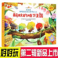 好好玩神奇生命立体书第二辑 蚂蚁的地下王国 儿童3d翻翻立体书 了解生命益智游戏幼儿专注力训练书3-6岁提高逻辑思维训