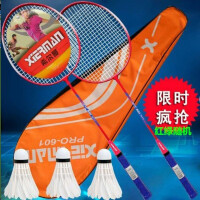 羽毛球拍双拍耐打亲子家庭儿童学生2支单拍初学耐用羽毛球拍-加强耐打型增高端球拍+三球