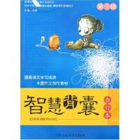 中学生阅读系列・智慧背囊・第3辑(电子书)
