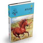 动物小说大王沈石溪品藏书系:野马归野(升级版)