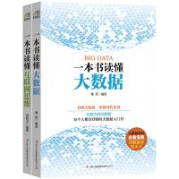 一本书读懂互联网思维、大数据(套装共2册)