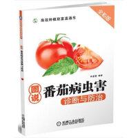 图说番茄病虫害诊断与防治