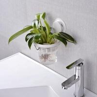 浴室壁挂式水养花盆置物架 办公室吸盘花盆 厨房卫生间意居家用品
