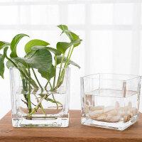 玻璃花瓶方型 简约正方形水培玻璃器皿透明方缸绿萝睡莲铜钱草水培花盆玻璃花瓶 大