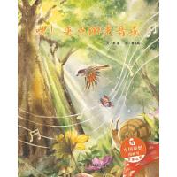 中国原创绘本 嘿!来点阳光音乐 儿童时代图画书精装版
