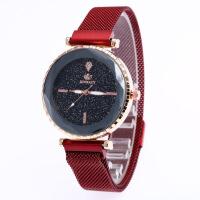 抖音同款新款女士手表韩版镶钻星空面石英吸磁铁网带潮流手表