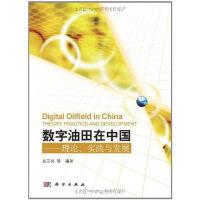 数字油田在中国――理论、实践与发展