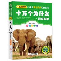 十万个为什么·原来如此篇(彩图注音版)小学生语文新课标必读丛书
