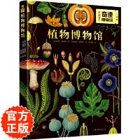 奇迹博物馆:植物博物馆(奇想国精选植物百科书) 风靡全球的重量级自然科普图鉴大系