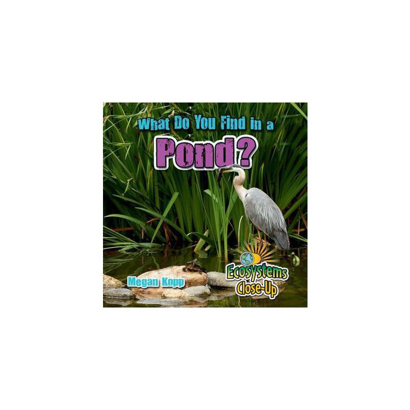 【预订】What Do You Find in a Pond? 预订商品,需要1-3个月发货,非质量问题不接受退换货。
