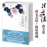 人间草木 汪曾祺散文集(无论怎样,我们一定要爱着点什么,恰似草木对光阴的钟情。)