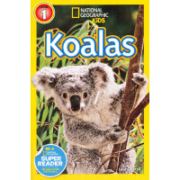 National Geographic Readers: Koalas (Level 1) 美国《国家地理》杂志-儿童