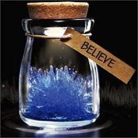 �t兔子 �G�B�袅餍窃S愿晶�` �S愿水晶 �S愿瓶 水晶夜光�S愿精�`��意玻璃瓶子幸�\�S愿瓶星星