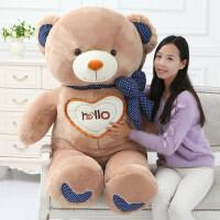 可爱熊熊公仔hello泰迪熊抱抱熊布偶娃娃女生日礼物毛绒玩具熊猫
