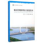 城市景观桥梁综合建造技术