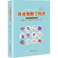 体液细胞学图谱 湖南科学技术出版社