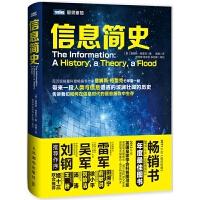 信息简史 (美)詹姆斯・格雷克著 计算机理论 电脑科普知识 (第九届文津图书奖获奖作品,次为信息作史,媲美《时间简史》