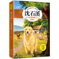 沈石溪十二生肖故事:猴鸡狗猪