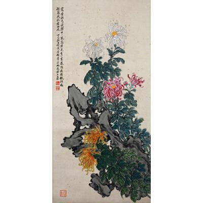 R190黄山寿菊花