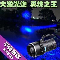 钓鱼灯夜钓灯超亮强光氙气2000W蓝光 四光源防水台钓大功率紫光灯