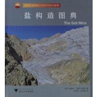 盐构造图典(中国石油勘探开发研究院出版物)