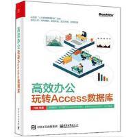 高效办公玩转Access数据库 Access数据库学习方法使用宏和VBA数据库安全与优化 access数据库管理书籍