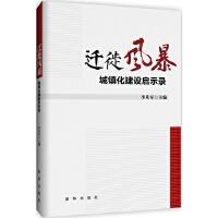 迁徙风暴:城镇化建设启示录/李从军