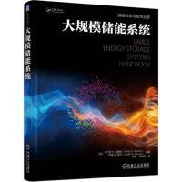 大规模储能系统 机械工业出版社