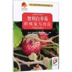 智利白草莓的恢复与改良(第七届世界草莓大会系列译文集)
