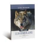 【BF】濒临灭绝的北半球哺乳动物