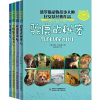 最神奇的动物故事(4册/套)―