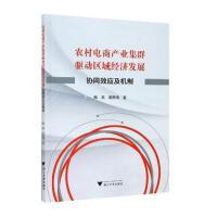 农村电商产业集群驱动区域经济发展:协同效应及机制 浙江大学出版社