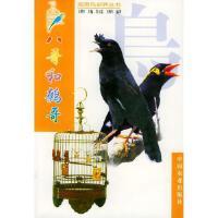 八哥和鹩哥莫玉忠 王增年 编中国农业出版社