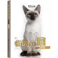 宠物大本营--名优宠物猫品种图鉴