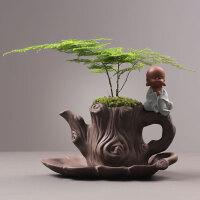 创意个性文竹盆景绿植盆栽紫砂花盆植物透气复古陶瓷盆器托盘家用
