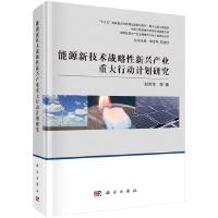 能源新技术战略性新兴产业发展重大行动计划研究