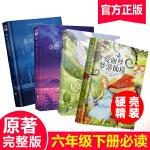 尼尔斯骑鹅旅行记+鲁滨逊漂流记+汤姆・索亚历险记+爱丽丝梦游仙境 全4册