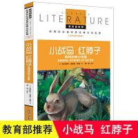 小战马红脖子西顿野生动物故事集记动物小说8-9-15岁初中小学生三四五六年级课外阅读物正版少儿童图书