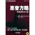 惠普方略:网络团队的力量――世界500强企业发展丛书