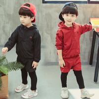 男童运动套装秋款男宝宝时髦两件套装韩版5潮衣小儿童衣服2周岁