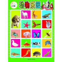 小白兔童书馆*超人双面挂图2//动物世界