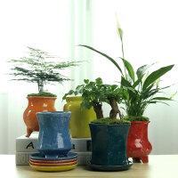 创意个性多肉花盆大口径陶瓷家用绿萝文竹植物盆景盆栽盆器带托盘
