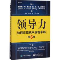 领导力(第6版) 电子工业出版社