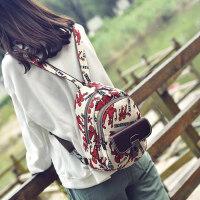 韩版涂鸦双肩包女复古休闲女士背包棉麻旅行女布包民族风百搭书包