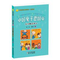 【旧书二手书8新正版】中国兔子德国草:天才躺在地上 周锐,周双宁 9787534278020 浙江少年儿童出版社